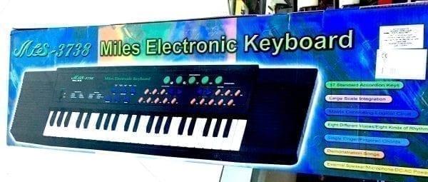 Orga-electronica-mare