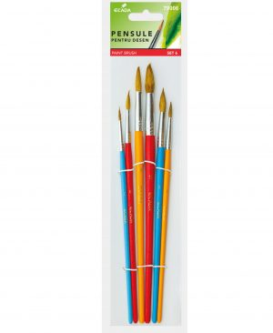 Pensula set 6 varf rotund Ecada