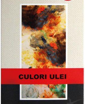 acuarela ulei 10 culori artist daco