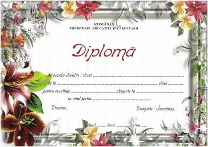 diploma floricele